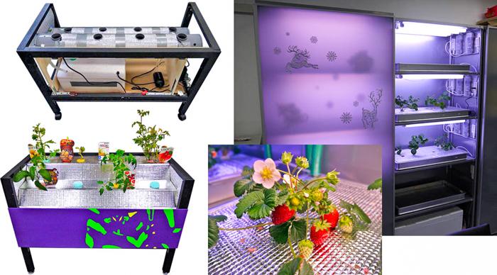 High tech hydroponics
