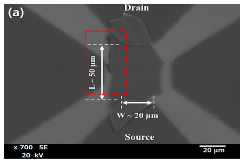 Two dimensional materials: Advanced molybdenum selenide near infrared phototransistors