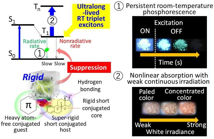 Molecular materials with ultralong-lived room-temperature triplet excitons: Persistent room-temperature phosphorescence and nonlinear optical characteristics under continuous irradiance